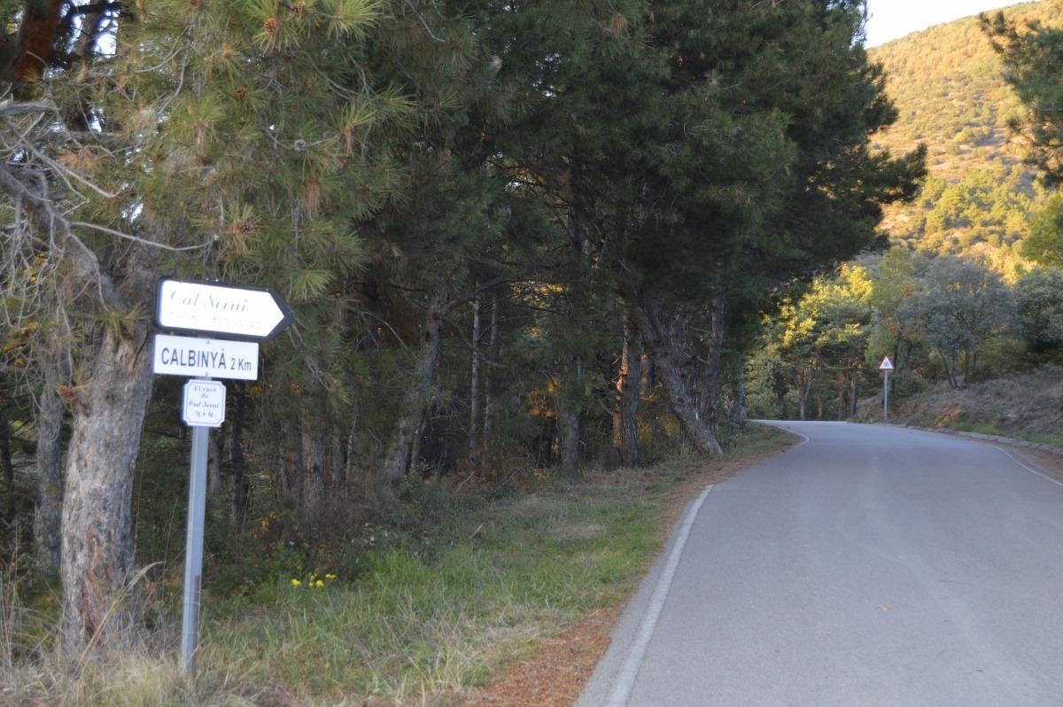 """Els municipis pirinencs demanen """"tracte diferencial"""" i un confinament que no els deixi aïllats"""