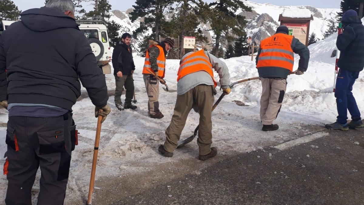 Operaris de la brigada del parc netejant els accessos afectats per la nevada del temporal 'Gloria'.