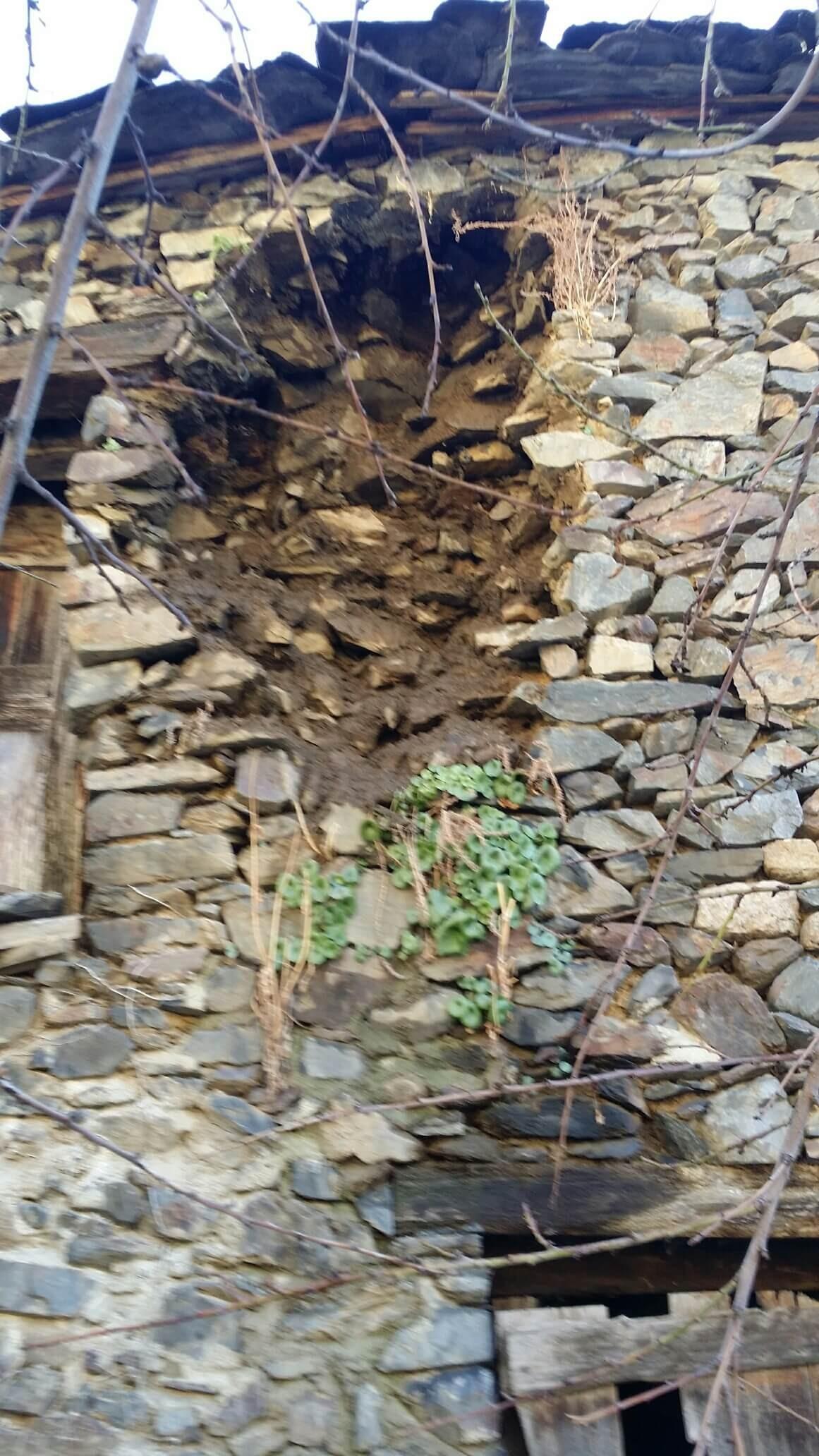 El forat que ha deixat al mur de l'era que dona a l'hort de cal Ribot el pany de paret que va caure amb les nevades de fa quinze dies (Foto: J. S.).