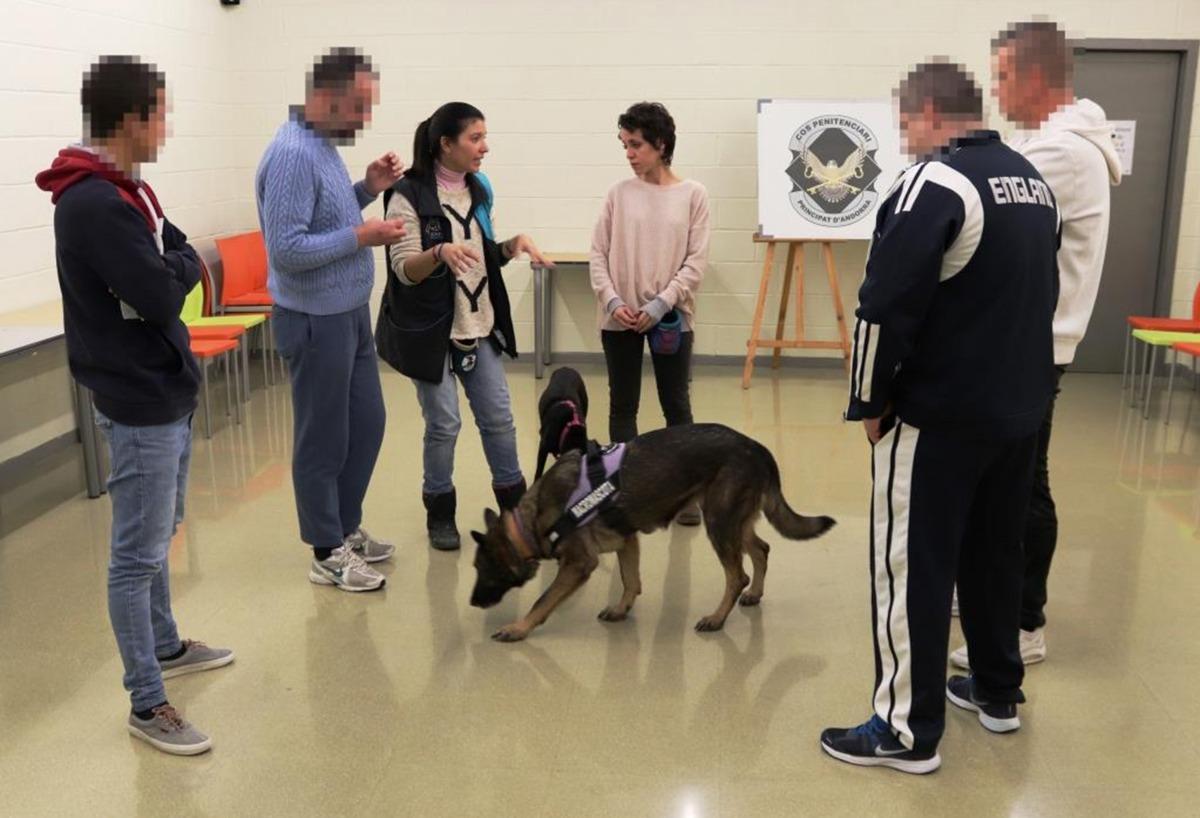 Alguns dels participants en el curs en una de les sessions.