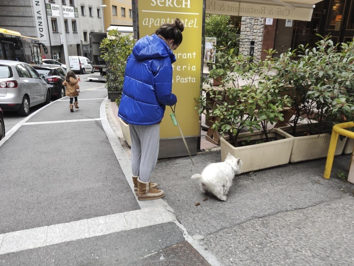 Una noia recull la tifa del gos.