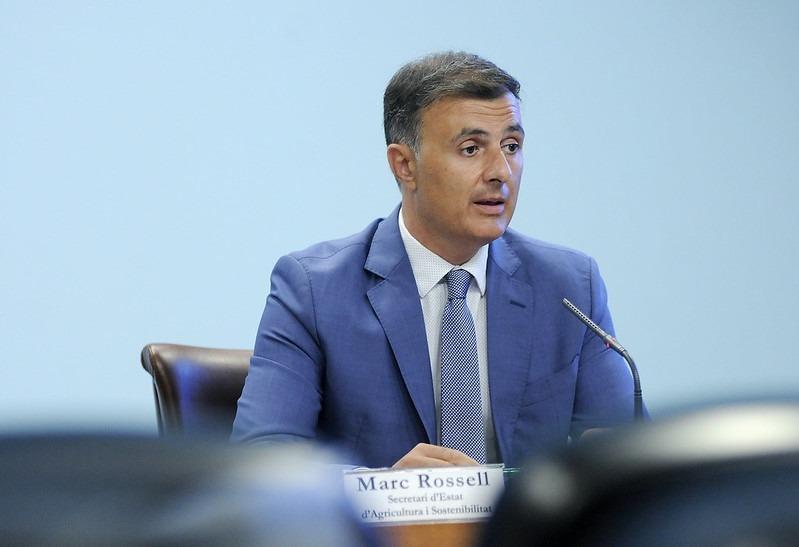 El secretari d'Estat d'Agricultura i Sostenibilitat, Marc Rossell, en la presentació del reglament ahir.