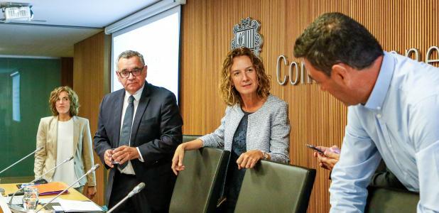 Calvó abans de la compareixença davant de la comissió legislativa de Política Territorial, Urbanisme i Medi Ambient, ahir.