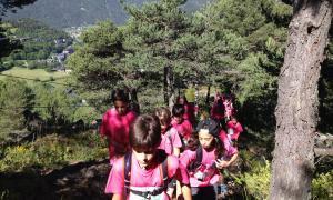 Ordino convoca un concurs per a un projecte cultural al bosc de l'Esquella