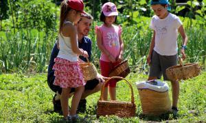 Els infants d'Ordino porten a taula els productes de l'Hort de la ludoscola