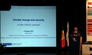 L'OSCE-PA alerta de les conseqüències polítiques i de seguretat derivades del canvi climàtic