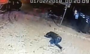 Deu persones detingudes per enfrontar-se als agents de policia