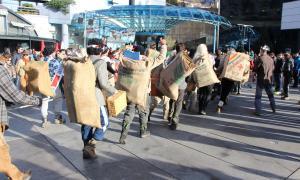Un dels actes del Carnaval d'Encamp.
