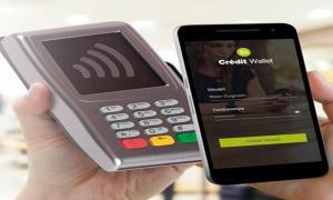 L'aplicació Crèdit Wallet.