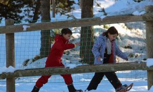 Les activitats es faran a Naturlandia.
