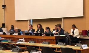 Andorra exposa a Nacions Unides la feina feta en la lluita contra la discriminació racial