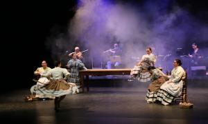 Actuació de l'Esbart Laurèdia al Dansàneu 2018.