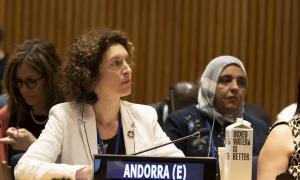 La ministra d'Afers Exterior, Maria Ubach, al fòrum sobre desenvolupament sostenible de l'ONU.