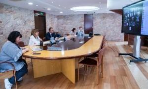Trobada telemàtica entre la cònsol major d'Andorra la Vella, Conxita Marsol, i el Consell d'infants.