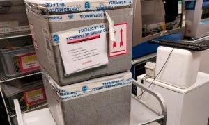 Les vacunes de Pfizer enviades des d'Espanya i que van arribar ahir a la nit.