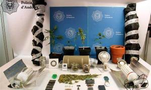 La Policia desmantella un punt de cultiu de marihuana a Encamp en el marc de l'operació Línia