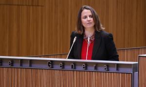 El PS demana més detalls del traspàs del SAD a l'executiu