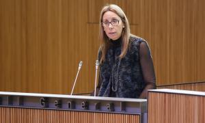 SDP demana la documentació de l'acord amb Catalunya per importar residus