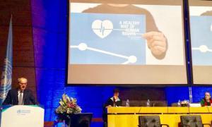 L'OMS acull de manera satisfactòria el projecte Camí saludable dels drets humans  L'OMS acull de manera satisfactòria el projecte Camí saludable dels drets humans