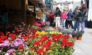 L'última edició de la fira del mercat i de la flor de la Massana es va clausurar el 19 de maig del 2019.