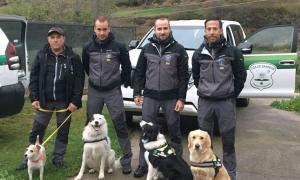 Els banders mostren al 4t Congrés d'agents forestals a Vielha la tècnica de recerca de truites amb gossos de rastre Els banders mostren al 4t Congrés d'agents forestals a Vielha la tècnica de recerca de truites amb gossos de rastre