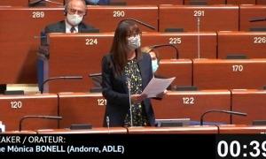 Un moment de la intervervenció de Bonell aquest migdia al Consell d'Europa,