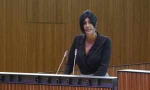 La parlamentària Carine Montaner en una intervenció al Consell General.