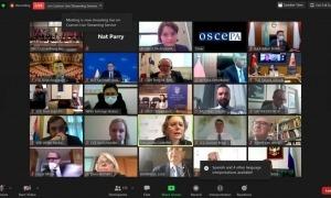 Un moment de la reunió de la Comissió permanent integrada per tots els caps de delegació de l'Assemblea parlamentària de l'OSCE.