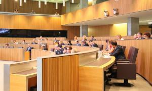 ANA/ Una imatge del Consell General  D'aquest dijous.