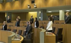 Els consellers generals van guardar un minut de silenci per les víctimes de la Covid-19 en la sessió de dissabte.