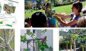 Algunes de les activitats del projecte 'Phénoclim'.