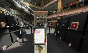 L'exposició es podrà visitar fins el proper 22 d'agost.