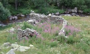 Restes del martinet de la farga del Madriu, envoltades de murs de pedra seca.