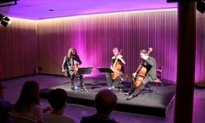 L'Academia dei Piacere va protagonitzar el 27 d'agost al foyer de l'Auditori Nacional l'últim concert andorrà de l'edició passada del Femap.