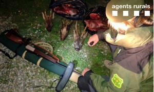 Cacen un furtiu d'Encamp que va matar un isard i dos cabirols a l'Alt UrgellCacen un furtiu d'Encamp que va matar un isard i dos cabirols a l'Alt Urgell