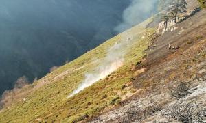 L'incendi ha cremat unes 240 hactàrees de pastures.