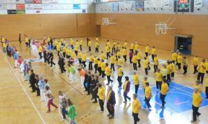 La 9a Diada Esportiva de la Gent Gran espera aplegar 250 persones La 9a Diada Esportiva de la Gent Gran espera aplegar 250 persones