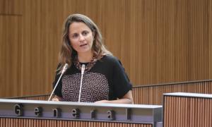 La consellera general del PS Rosa Gili.