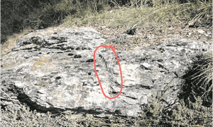 El 'segell' que corona la penya, encerclat. Probablement delimita el terme de Mas d'Alins, proposa Casamajor.