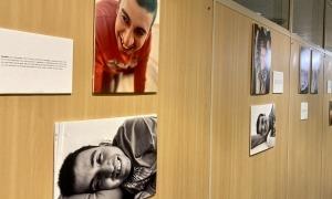 Algunes de les imatges que formen part de l'exposició.