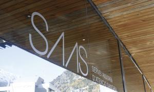 El SAAS va pagar cinc factures a una empresa amb què no tenia contracte