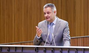 El ministre d'Economia, Competitivitat i Innovació, Gilbert Saboya, en un moment de la seva intervenció ahir al Consell General.