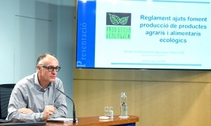 El director d'Agricultura, Josep Casals, en la compareixença d'ahir.