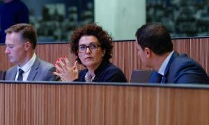 La consellera liberal, Judith Pallarés, va defensar l'esmena a la totalitat al text d'ocupació.