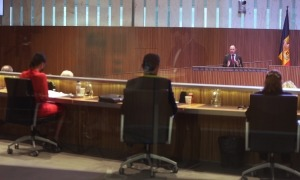 El debat d'orientació clourà avui amb les propostes de resolució que presentin els grups parlamentaris.