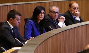 """La parlamentària de Terceravia, Carine Montaner, va demanar al titular de Salut """"posar fil a l'agulla"""" per resoldre els problemes del Cedre."""