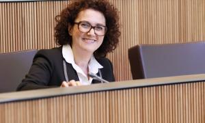 La consellera general del grup parlamentari liberal, Judith Pallarés.
