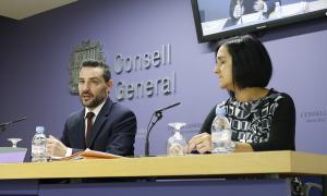 Els consellers generals demòcrates Marc Ballestà i Sofia Garrallà van presentar ahir les esmenes al text de la funció pública.