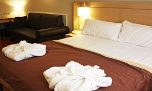La UHA hauria estat més exigent en equiparar els apartaments i els hotels