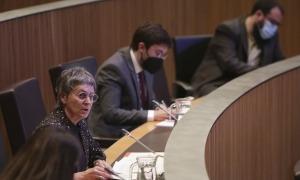 La consellera del PS Susanna Vela en una sessió del Consell General.